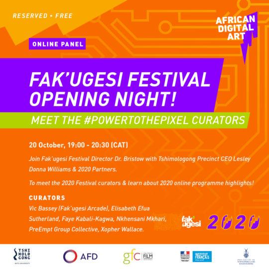 FAK'UGESI FESTIVAL OPENING NIGHT!  MEET THE #POWERTOTHEPIXEL CURATORS