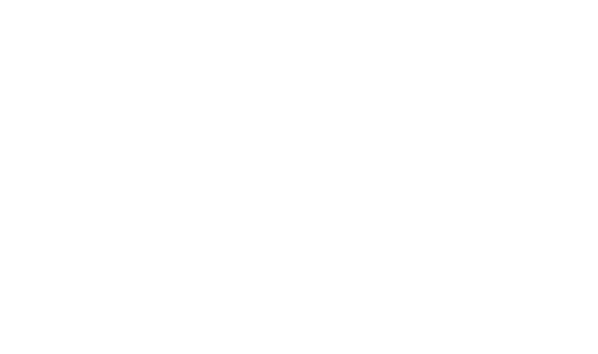 WITS School of Digital Arts logo