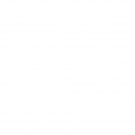 Goethe Institut South Africa