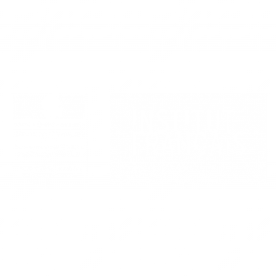 French Institute in South Africa