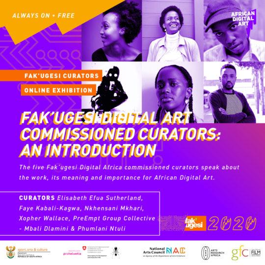 Fak'ugesi Digital Art Commissioned Curators: An Introduction